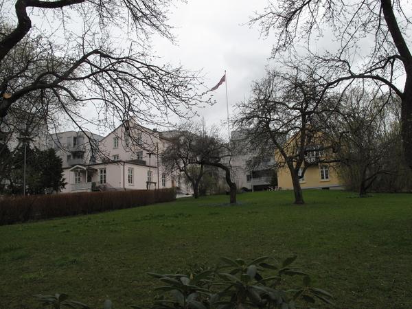 Schultzehaugen