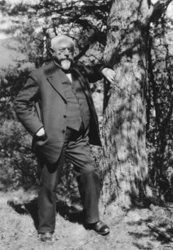 Tollef Kilde hadde mange verv - her er han fotografert av Wilse i egenskap av styreledlem i Østerdalens Turistforenig i 1929, lett opplent mot en furu.Foto: Wilse / Norsk Folkemuseum<br>