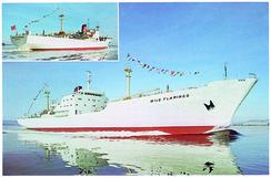 Bnr. 76, M/S Wild Flamingo. Kjøle- og fryseskip bygget for verdens største skipsrederi, P&O i England.Foto: Made in Drammen<br>