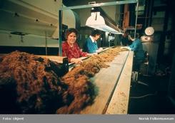 Fra produksjonen på Petterøes på Bislet, 1972Foto: Norsk Folkemuseum<br>