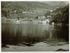 Trengereid Fabrikker sett frå sjøen i 1910.Foto: Ukjend<br>