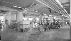 Fabrikken på Damsgård i 1962Foto: Norvin reklamefoto / Ub Bergen<br>