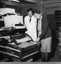 I 1972 fikk en dame innfridd et ønske fra bladet Alle Kvinner om en drømmedag: Hun ville se Keillands dropsfabrikk! Foto: Rigmor Delphin / Oslo Museum<br>