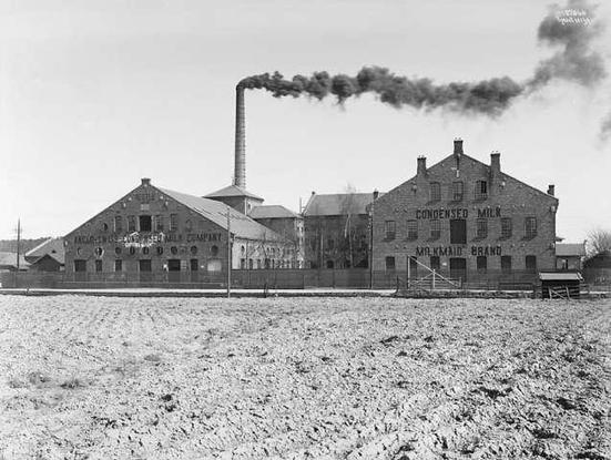 melkefabrikk