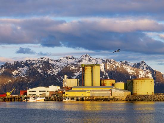 Sildoljefabrikk i Vesterålen