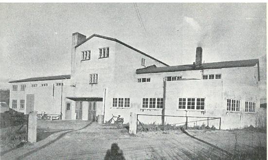 Norsk Haargarnspinneri rundt 1953 (Ingressbilde)